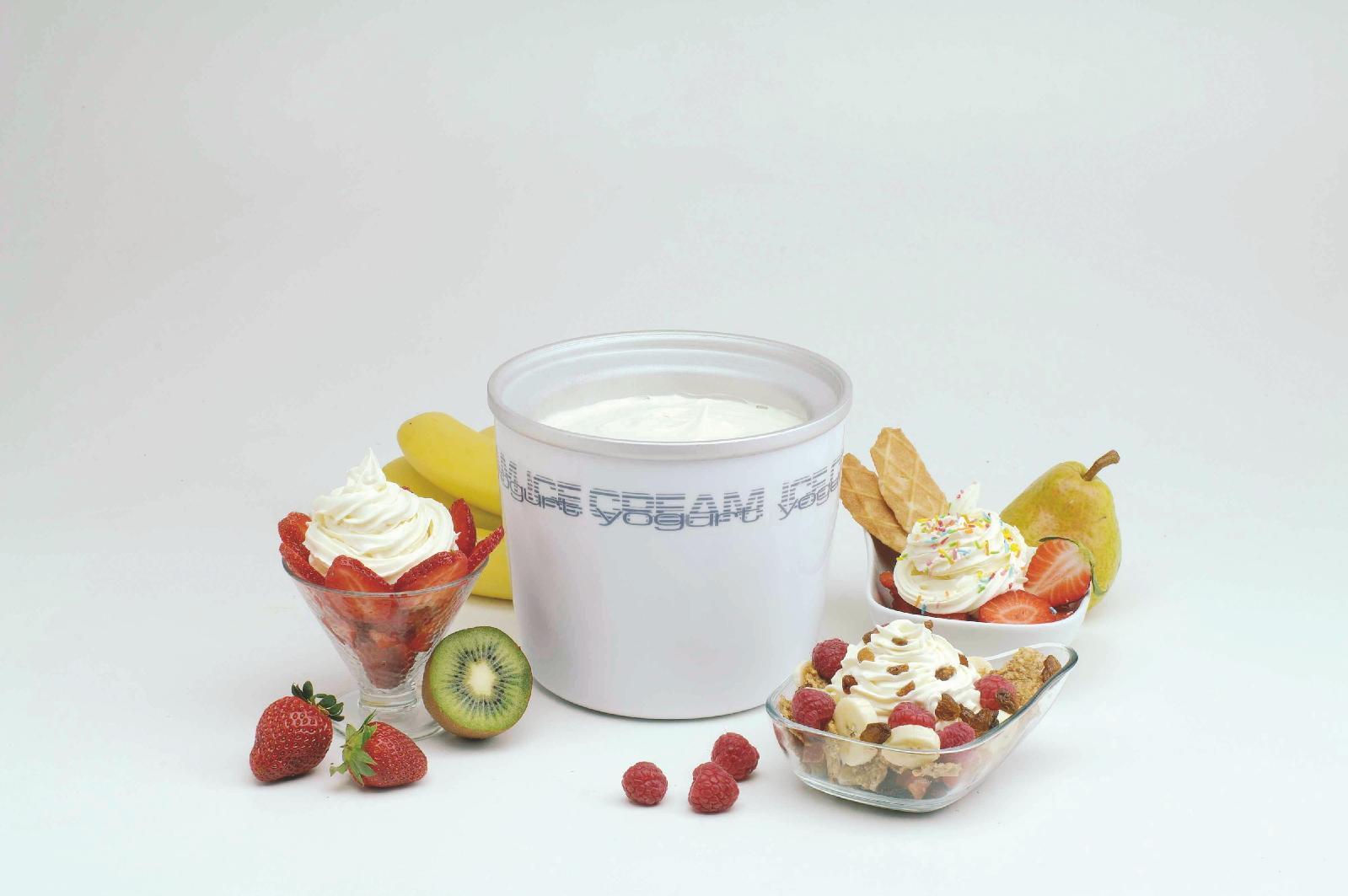 Homemade Yogurt Ice Cream Recipe — Dishmaps